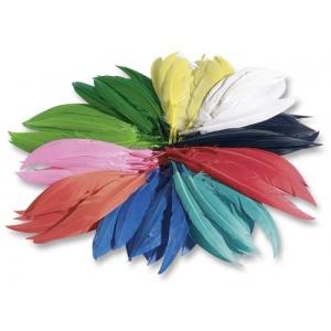 Indiánská peříčka 100g, cca 10-20cm, mix barev