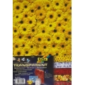 Transparentní papír 5 listů 115g 23x33cm mix 5 motivů Fruits & Flowers